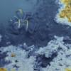 Los científicos descubren un lago bajo el mar: quienes nadan allí no vuelven con vida